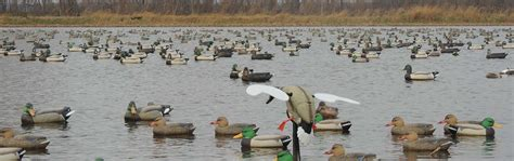 Duck Hunting Pit Blinds Illinois Waterfowl Hunting Guided Duck Amp Goose Hunts