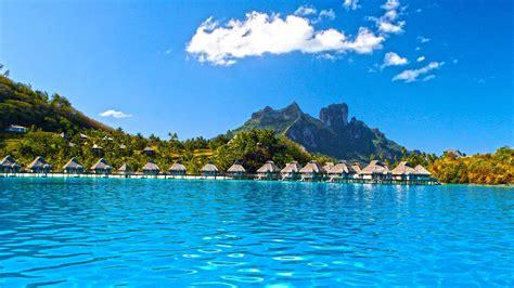 tropical desktop background  images