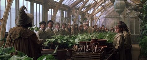 herbology classroom harry potter wiki
