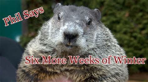 groundhog day quotes prognosticator the social poets psychic groundhog phil blessed us