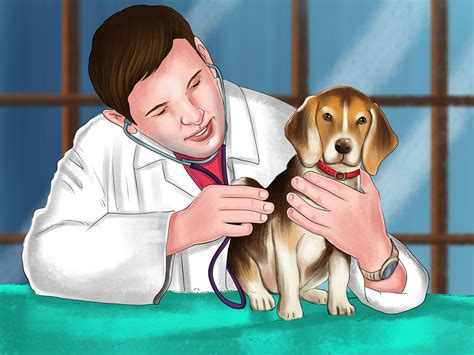 how to tell a s age how to tell your puppy s age with pictures wikihow