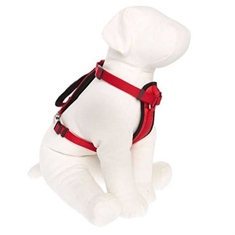 kong comfort harness compare price to kong harness small red tragerlaw biz