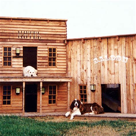 texas dog house 26 brilliant dog houses that will change your pup s life