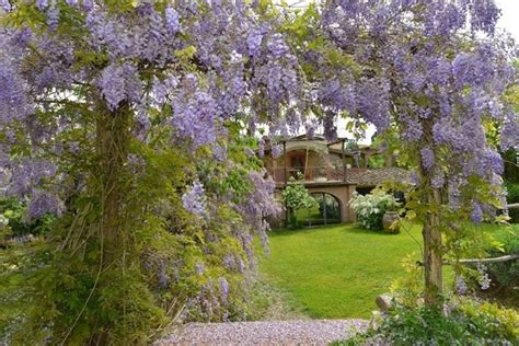 come creare un giardino fiorito creare un giardino fai da te progettazione giardini