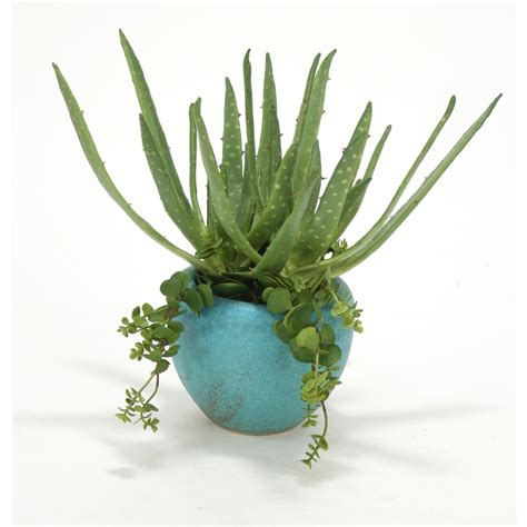 large succulent planter aloe and hanging succulents in large turquoise planter