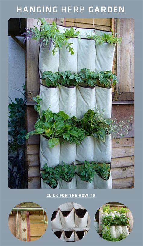 hanging herb garden 7 diy projects for renters