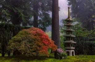 about portland japanese garden portland japanese garden
