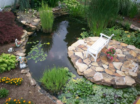 water garden ideas water garden designs ideas easy simple landscaping ideas