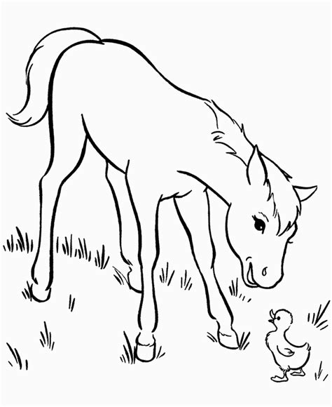 great horse coloring pages online new coloring pages