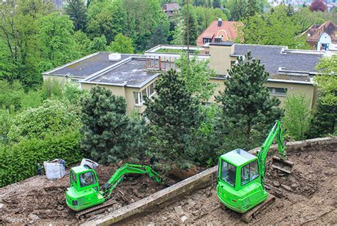 der gartenbau magazin baumpflanzung grossbaum egli gartenbau ag uster