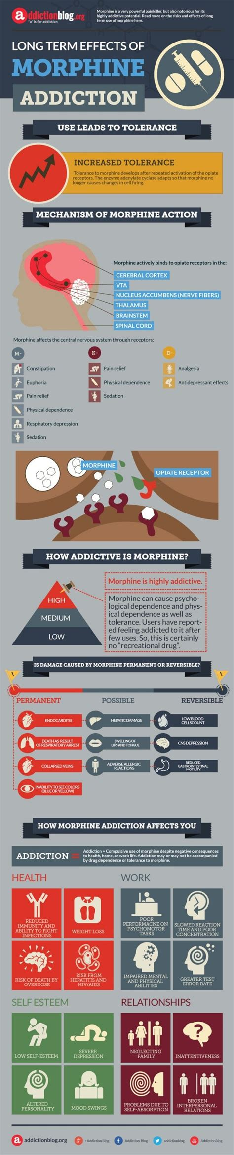 Day Six Of Morphine Detox by Best 25 Effects Of Abuse Ideas On