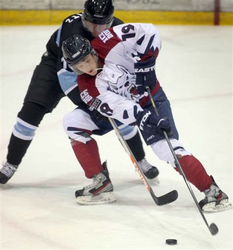 fairbanks dogs dogs downed by 2 goals dogs newsminer