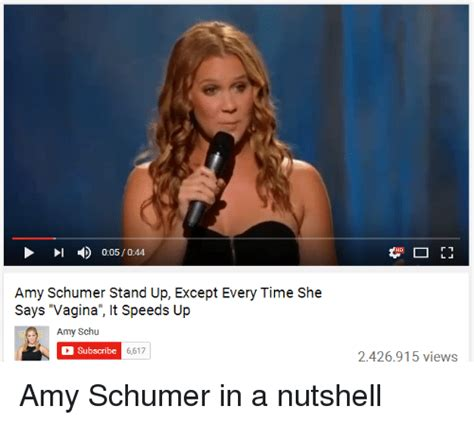 Amy Schumer Meme - search amy memes on me me