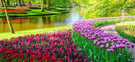 giardini di keukenhof parco keukenhof amsterdam