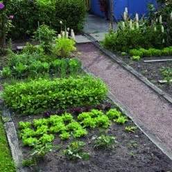 jardin comment r 233 ussir le trac 233 de potager