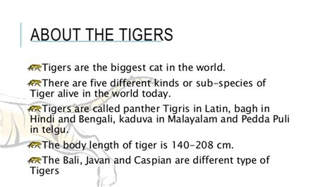Save Tiger Essay In by Save The Tigers For Class Ix