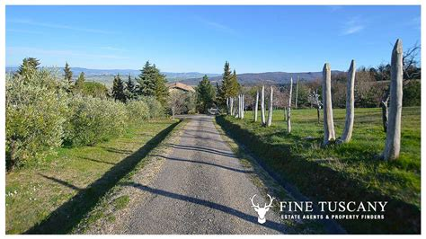 houses to buy in tuscany italy stone farmhouse with guest houses for sale in tuscany