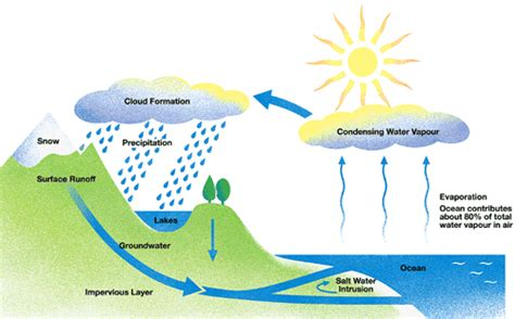 a diagram of the water cycle time for ielts sle answer ielts writing task 1 cycle