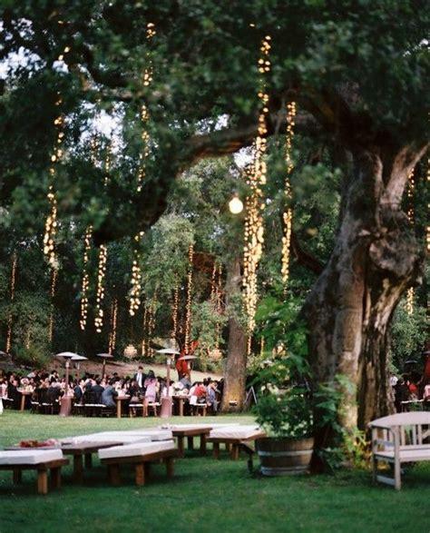 dangling lights tree  wed
