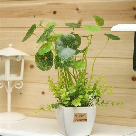 Tanaman Hias Artifisial Bonsai Bentuk Huruf Home 1 Set aliexpress beli koin rumput mini dekorasi bonsai meja kantor bunga buatan kecil set