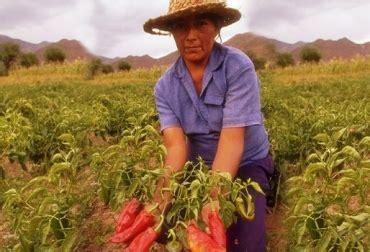 imagenes mujeres rurales mujeres rurales en valle del cauca tendr 225 n mayores