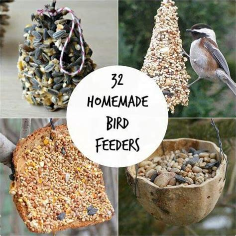 17 best images about birdseed ornaments on pinterest