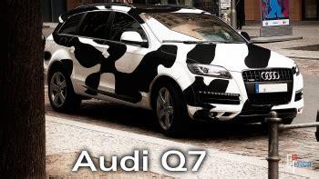 Bmw Kuh Aufkleber by Audi Stupidedia