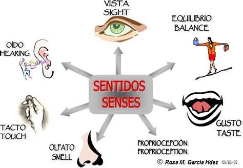 imagenes sensoriales visuales cromaticas ejemplos psicolog 237 a y pedagog 237 a 191 qu 233 es la visi 243 n su importancia