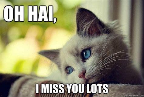 Miss You Meme - i miss you meme pinterest image memes at relatably com