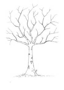 Tree Outline With Leaves by Best 25 Tree Outline Ideas On