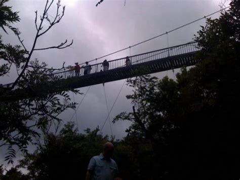 mile high swinging bridge blowing rock nc the mile high swinging bridge at grandfather mountain nc