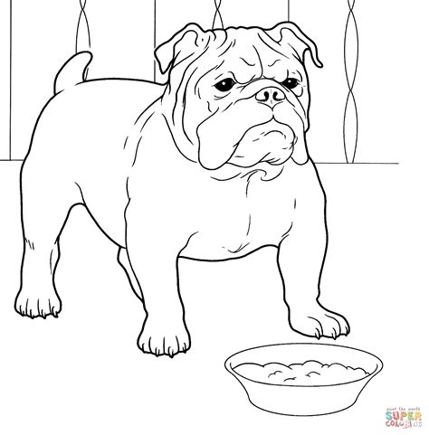 coloring pages of bulldog puppies english bulldog puppy coloring pages coloring pages