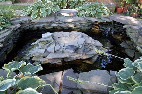 turtle ponds for backyard turtle pond envy turtlewife s weblog