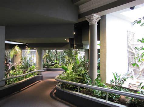 saint louis zoo 2010 general view inside the bird house