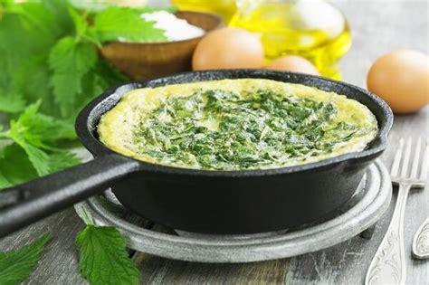 cucinare ortica ortica benefici e utilizzo nella quotidianit 224