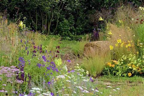 Wildlife Garden Ideas Plants For A Wildlife Garden Rhs Caign For School Gardening