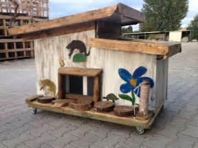 gatti in giardino casetta da giardino per gatti casetta da giardino per