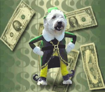 money dog dancing gif find  gifer