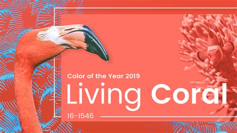 color of coral living coral is pantone color of the year 2019