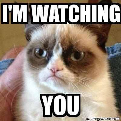 I M Watching You Meme - meme grumpy cat i m watching you 3567846