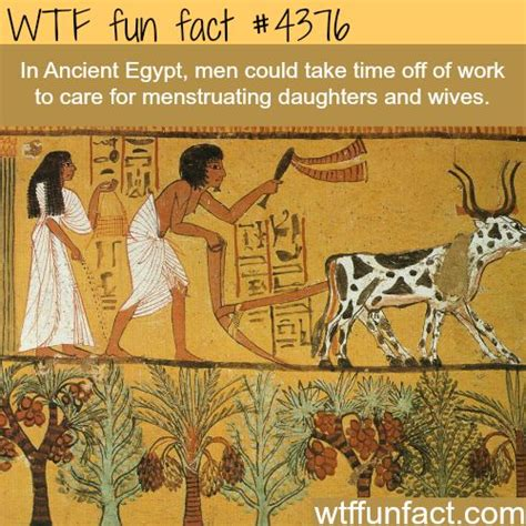 information on egyptain hairstlyes for men and women best 25 ancient egypt history ideas on pinterest