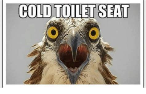 Warm Toilet Seat Meme - 25 best memes about cold toilet seat cold toilet seat memes