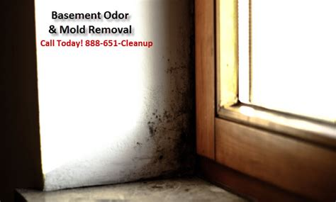 remove mildew smell from basement basement odor removal nj crawl space odor remediation