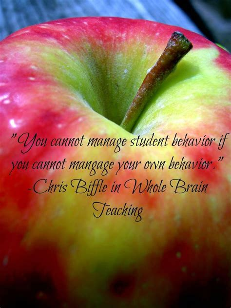 whole brain teaching for challenging 44 best math teaching books images on