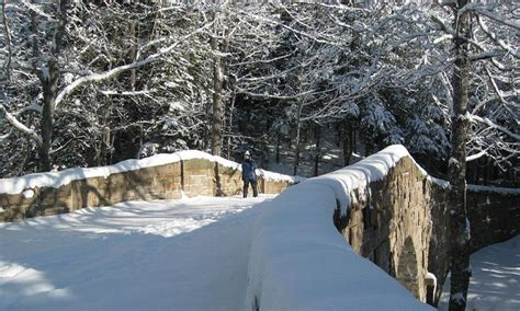 Acadia National Park Cabins Pet Friendly by Bar Harbor Snowshoeing Snowshoe Rentals Tours Alltrips