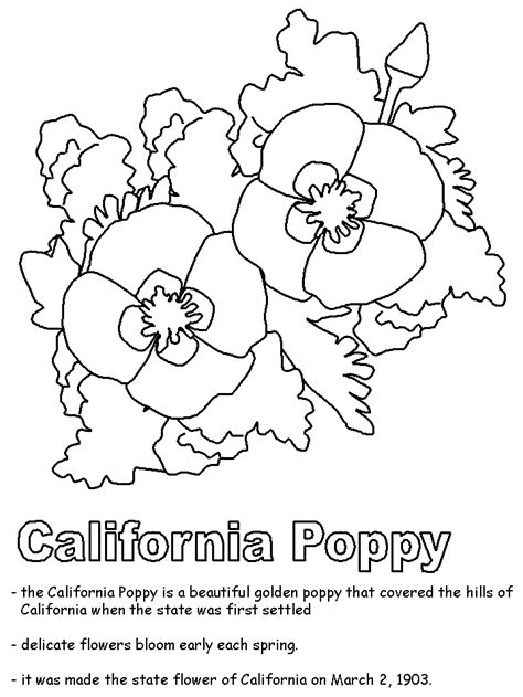 free anzac day poppy flower coloring pages