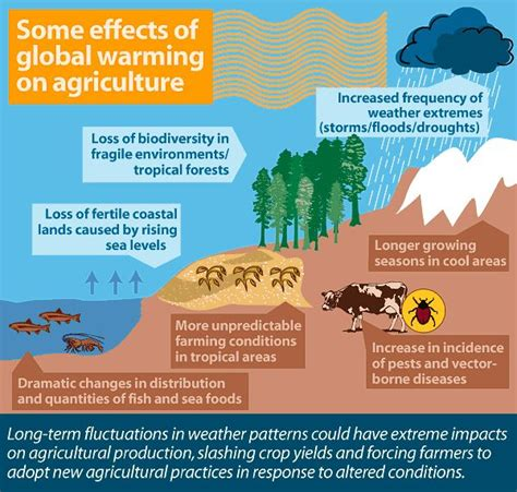 some effects of global warming on agriculture graph me up buddy facts facts