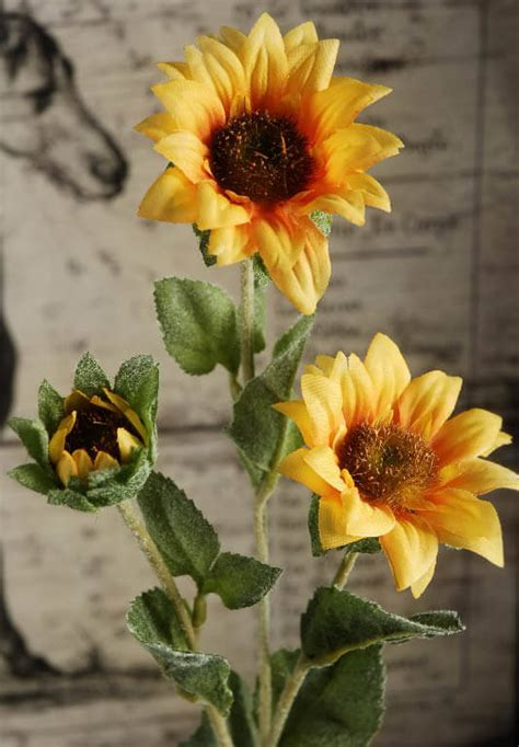 Sprei Sun Flower sunflower spray 25in