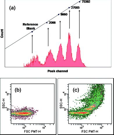 flow cytometry calibration specific interaction of dna functionalized polymer