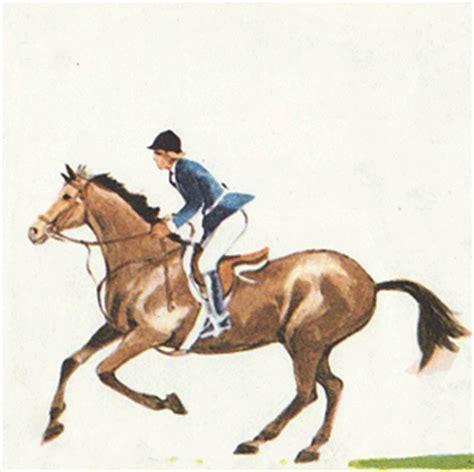 imagenes gif fitness gifs animados de equitacion animaciones de equitacion
